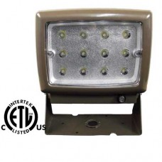 12 Watt  110V LED Flood Light